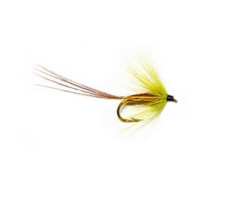 Exceptional Trout Fishing Fly, Galway Olive