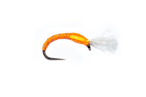 Dickinsons Orange Buzzer
