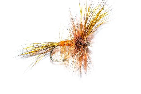 Fiery Ginger Wulff, Dry Fishing Fly