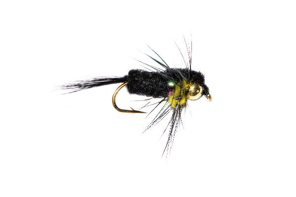 Fly Shop Flies, Rainbow Goldhead Black and Yellow Montana Nymph
