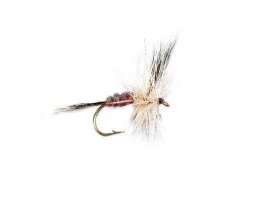 Fish Fishing Flies, Red Ribbed Badger Mayfly
