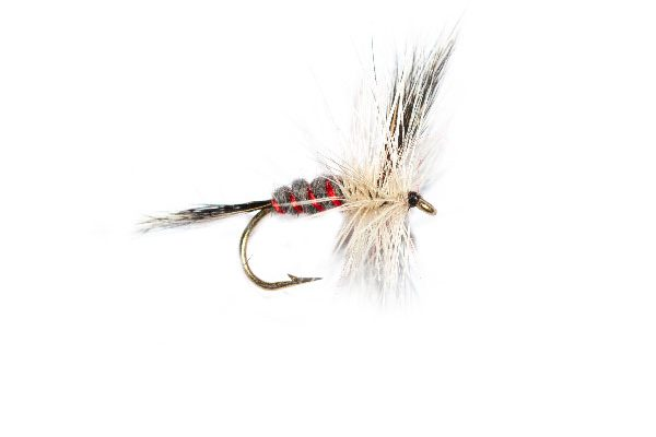 Fish Fishing Flies, Red Ribbed Badger Mayfly