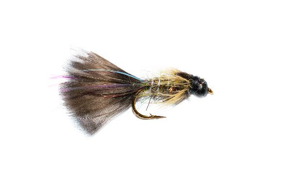 Fish Fishing Flies Mayfly Taddy