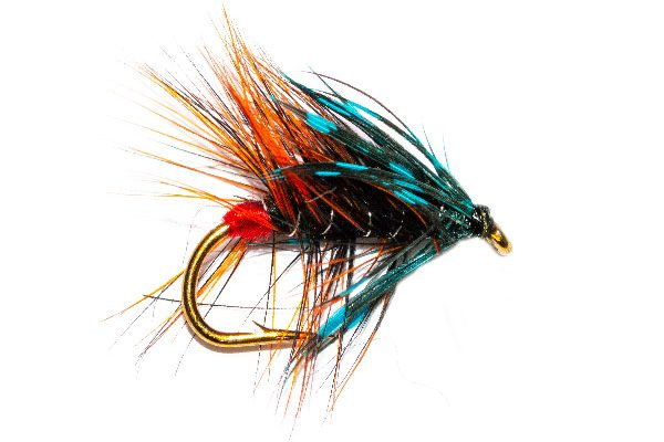 Blootch Wet Fishing Fly