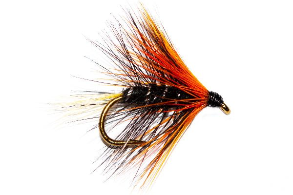Wet Fishing Fly