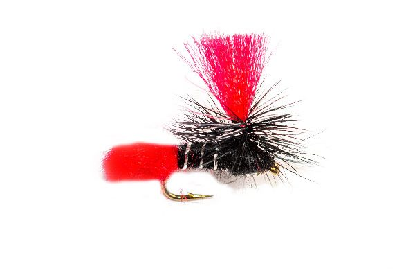 Black Zulu Red Hot Spot Parachute