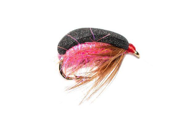 Pink Foam Beetle