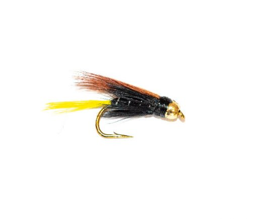Connemara Black Goldhead