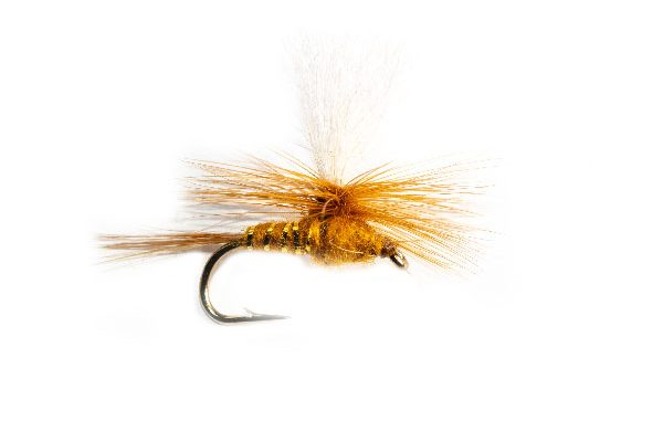 Fishing Flies Online