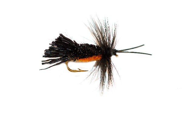 Horned Sedge Dry Fishing Fly
