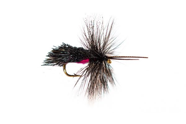 Fly Fishing Shop Online