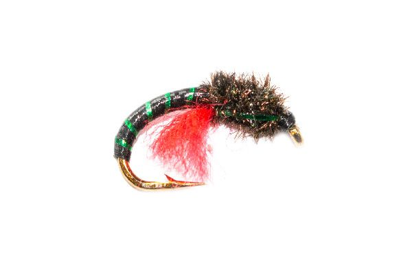 Trout Fishing Fly, Peacock Head Green Crisp Packet Epoxy Buzzer