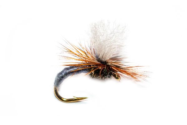Adams Klinkhammer Trout Fly