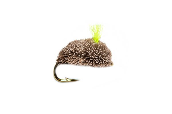 Fishing Fly Green Hot Spot Natural Dog Biscuit