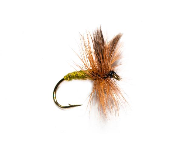 Greenwells Glory Dry Fishing Fly
