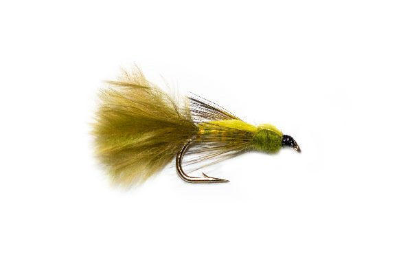 Yellow Back Pond Olive