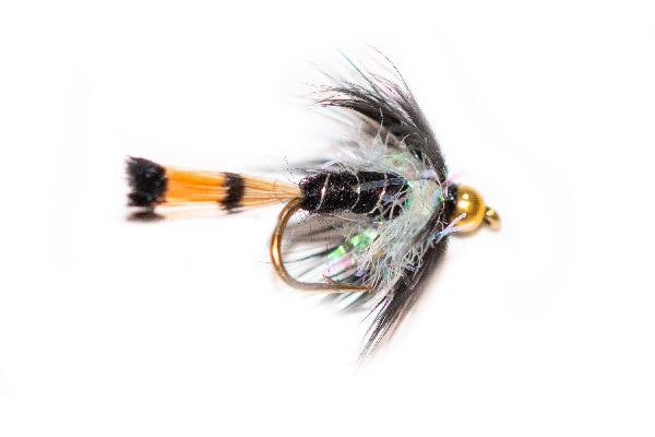Trout Fly Black Pennel Goldhead Pearl Thorax