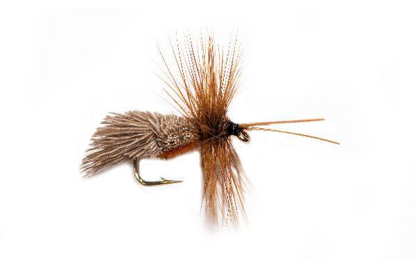 Goddard Caddis Brown Belly Sedge Fishing Fly