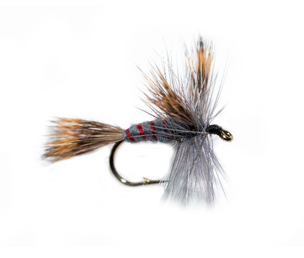 Grey Wulff Varient Trout Fishing Fly