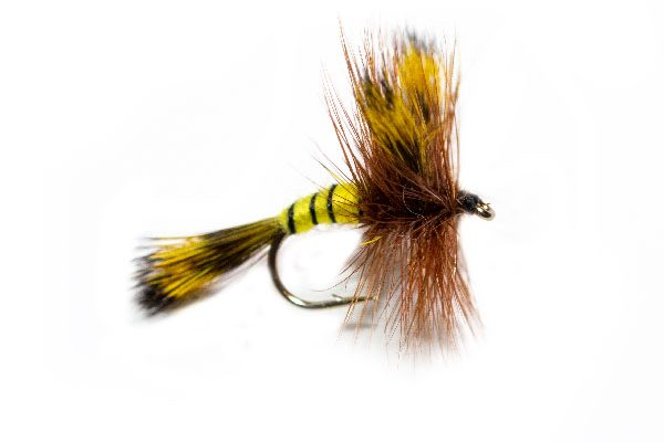 Honey Wing Wulff Trout Fishing Fly