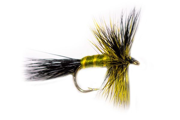 Olive Body Drake Fishing Fly