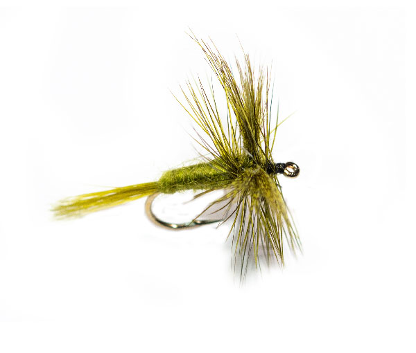 Trout Fishing Fly Rough Olive Wulff