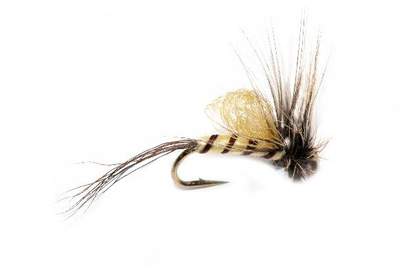Teds Loopwing Mayfly Fishing Fly