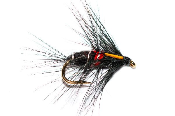 Fish Fishing Flies Bibio Biot Wet Fly