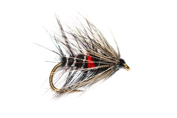 Bibio White Hackle Wet Fly