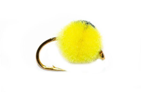 Bright Yellow Egg Black Eye Hotspot