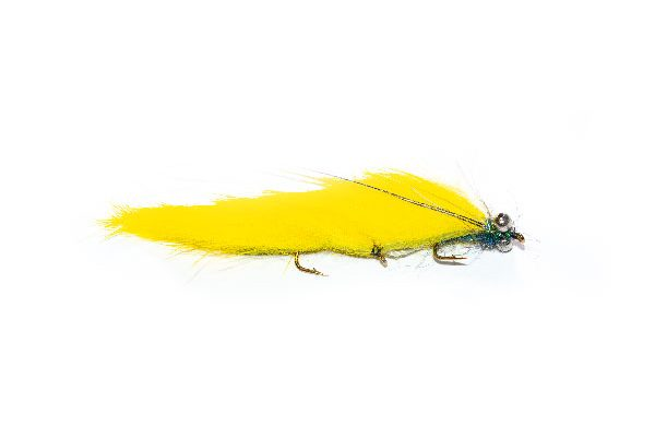 Chain Eyes Yellow Flash Snake