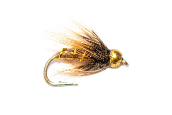 Coch Y Bonddhu Goldhead Wet Fishing Fly