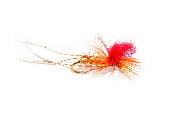 Daddy Long Legs Orange Parachute Red Hotspot