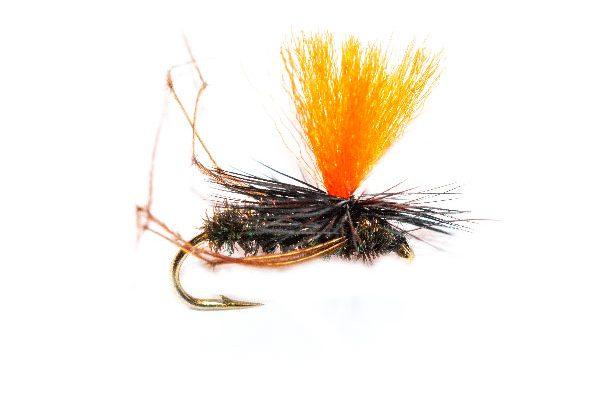 Daddy Long Legs Peacock Body Parachute Orange Hotspot