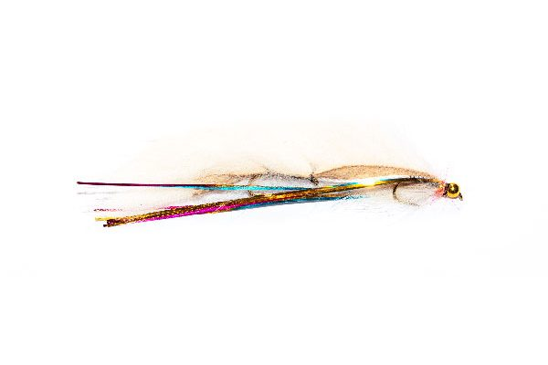 Goldhead White Rainbow Flash Snake