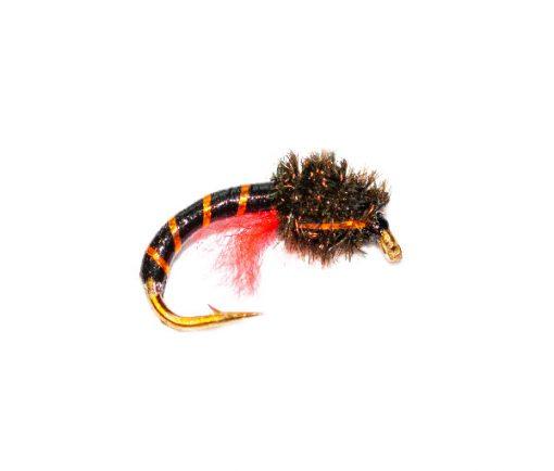 Peacock Head Orange Crisp Packet Epoxy Buzzer Fishing Fly