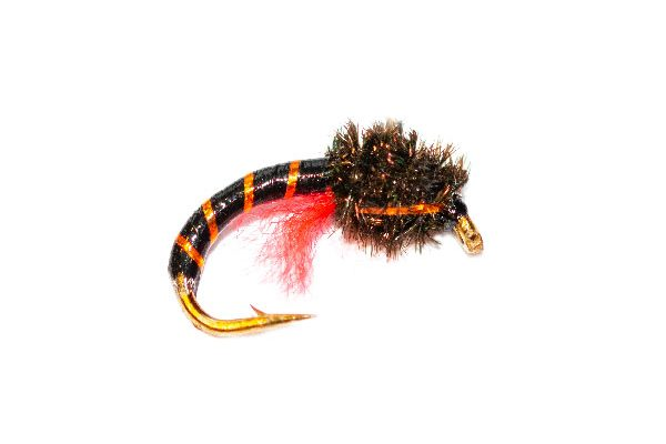 Peacock Head Orange Crisp Packet Epoxy Buzzer Fishing Fly