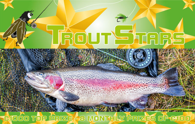 Fly Fishing Competition Trout Stars