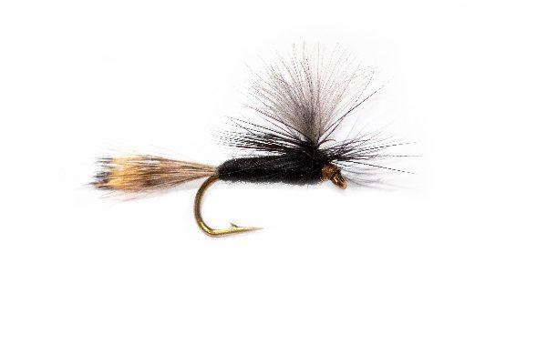 CDC Black Gnat Parachute