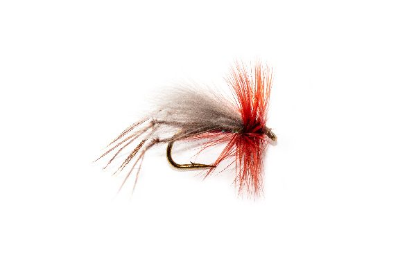 CDC Killer Claret Hopper