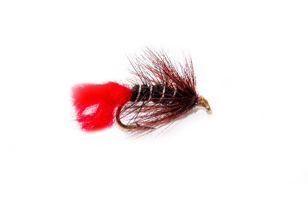 Claret Hackle Murder Zulu Fishing Flies