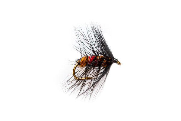 Orange Marmalade Bibio Wet Fishing Fly