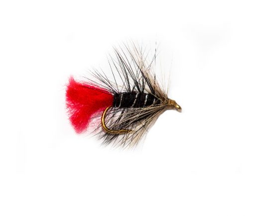 Zulu Ghost Wet Fishing Flies