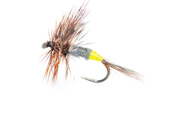 Adams Femal Dry Fishing Flies Online