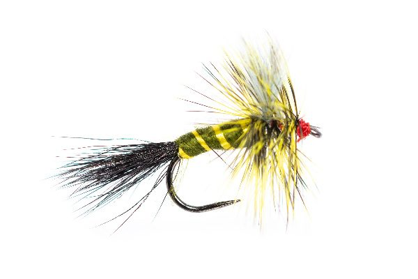 Fishing Flies Cavalier Drake May Fly