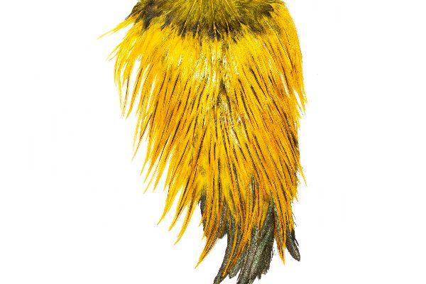 Yellow Badger Saddle Cock Cape Fly Tying Feather
