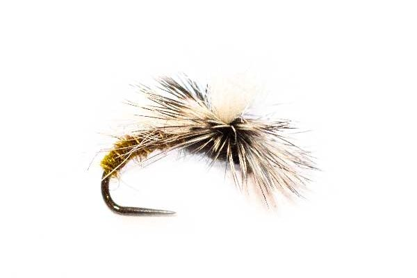 Fishing Flies Caddis Snow Shoe Emerger