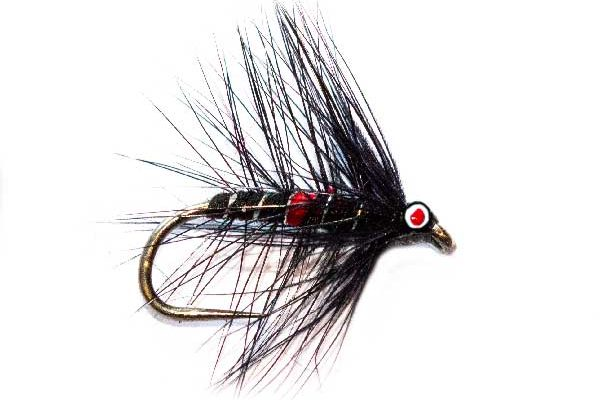 Eyed Bibio Wet Fishing Fly