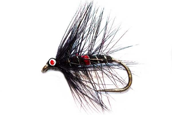 Best Trout Flies Eyed Bibio Wet Fishing Fly