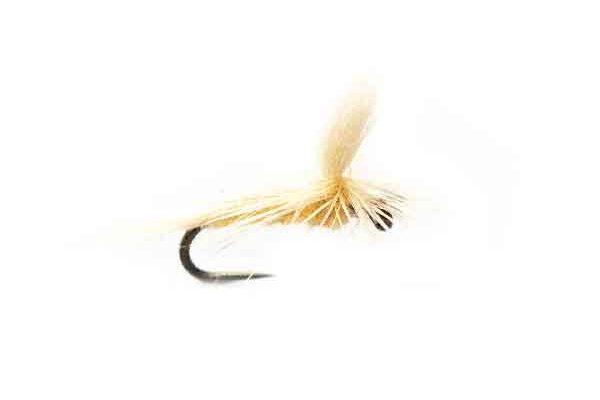 Cream Hendrickson Parachute
